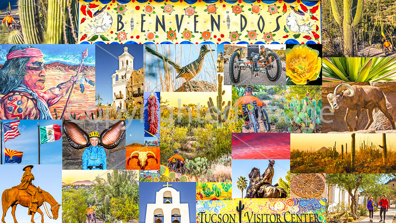 Postcard - Tucson Area & Saguaro National Park, Arizona - TerraTrike - JPEG - final #2