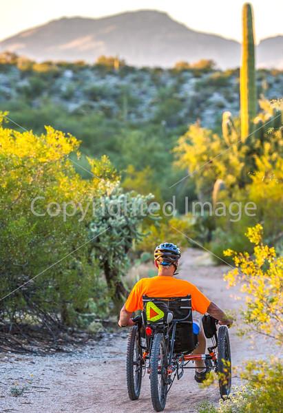 Saguaro National Park - C1-0220 - 72 ppi-2