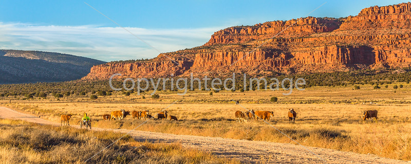 Vermilion Cliffs National Monument - C1-0074 - 72 ppi-2