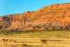 Vermilion Cliffs National Monument - C1-0124 - 72 ppi