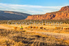Vermilion Cliffs National Monument - C1-0073 - 72 ppi