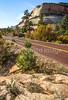 Zion National Park - C3-30313 - 72 ppi-2