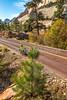 Zion National Park - C3-30320 - 72 ppi