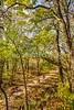 Katy Trail along Missouri River near Rocheport, MO - C2-0534 - 72 ppi