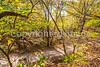 Katy Trail along Missouri River near Rocheport, MO - C2-0430 - 72 ppi