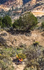 Grand Staircase-Escalante National Monument - C1-0112 - 72 ppi-4