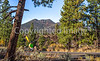 Sunset Crater Volcano National Monument - C3-0060 - 72 ppi-2