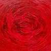 """Rose"" (oil on canvas) by Angelina Damenia"