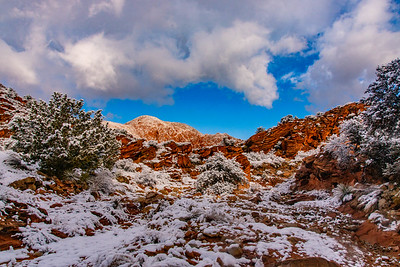 A Rare Snow Fall in the Red Cliffs Desert Conservation Area