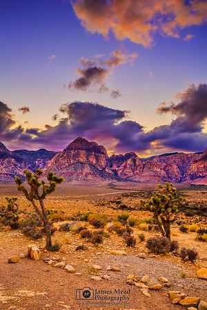 """""""Magic Moment,"""" Sunset over Junipers and the Rainbow Wall, Red Rock Canyon"""
