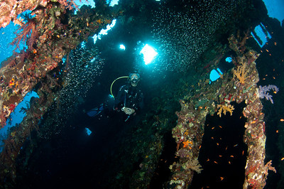 Diver inside the Carnatic Wreck