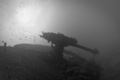 Anti-aircraft guns on the bow of the Thistlegorm Wreck
