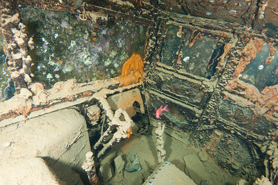 Inside of a truck in a cargo hold of the Thistlegorm Wreck