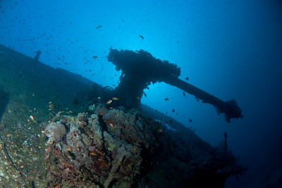 Anti-aircraft gun on the bow of the Thistlegorm Wreck