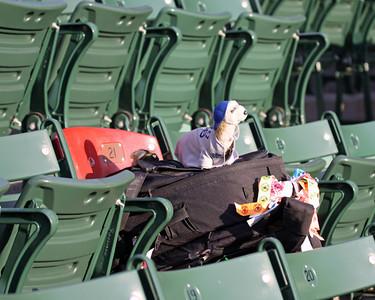 Red Sox, September 15, 2009