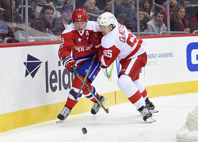 Red Wings Capitals Hockey