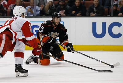 Red Wings Ducks Hockey