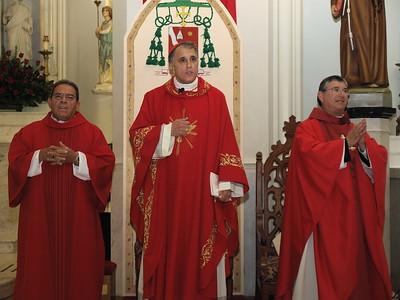 Cardinal & Bishop 5