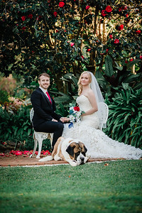 11_M+S_St-Bernards_Hotel_She_Said_Yes_Wedding_Photography_Brisbane