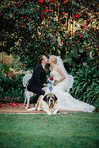 9_M+S_St-Bernards_Hotel_She_Said_Yes_Wedding_Photography_Brisbane