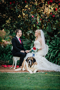 7_M+S_St-Bernards_Hotel_She_Said_Yes_Wedding_Photography_Brisbane