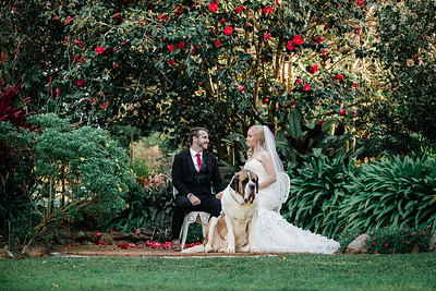 6_M+S_St-Bernards_Hotel_She_Said_Yes_Wedding_Photography_Brisbane