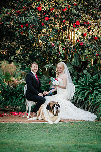 10_M+S_St-Bernards_Hotel_She_Said_Yes_Wedding_Photography_Brisbane