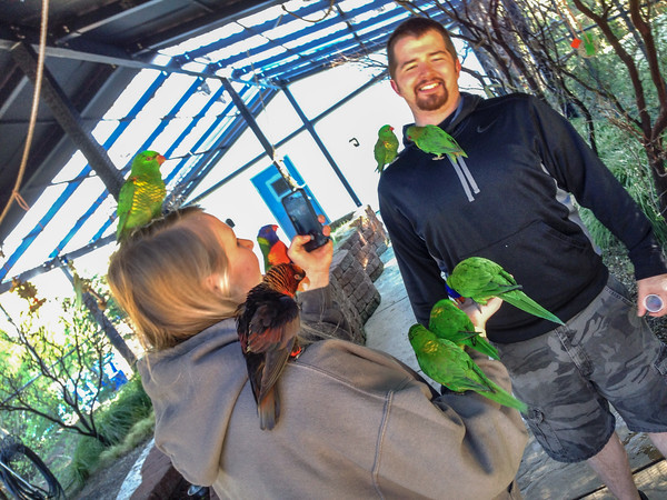 The Lorikeet aviary at Turtle Bay Exploration Park, Redding, California