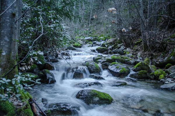 Crystal Creek stream in the Whiskeytown National Recreation Area.
