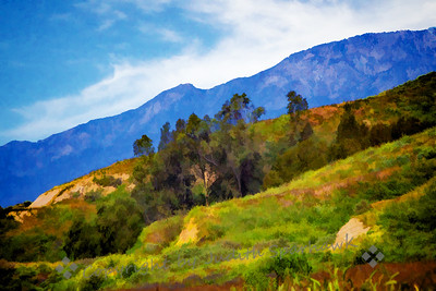 San Timoteo Canyon in Spring