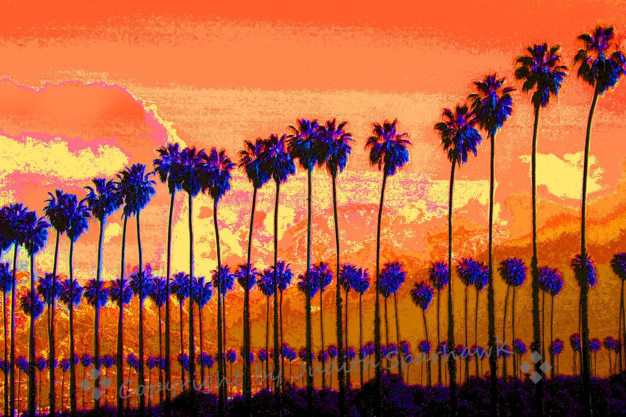 Redlands Winter ~ Sunset view