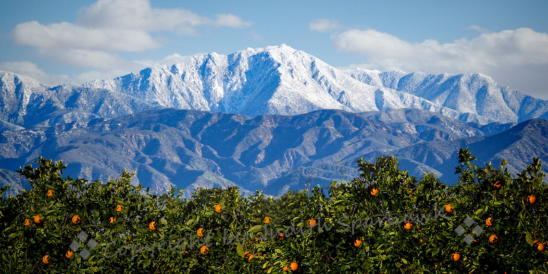 Snow Above Redlands