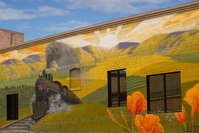 Train & Poppies Mural