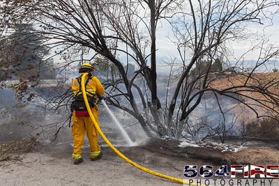 150629 RED FG Edgemont Fire-4