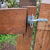 OOOOPS.     I inserted a vertical post between the original two posts after the double gate failure. Took a while to dig a worthy hole w/o a fence post digger. <br /> <br />  What I neglected to do, was make full coverage boards for the post where the gate attached..so I tried to jury rig it. This is a do-over.. I must either replace the fence rail to the left, or  do a better job on the patcher piece.  I have plenty of scraps that will do the trick if I make a template.