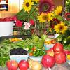 Late August 2003 - Harvest9.JPG