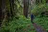 Mountain Biking on Streelow Trail