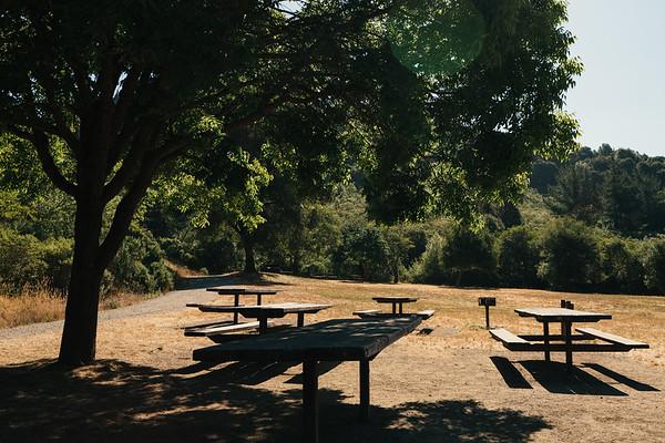 Redwood Regional Park Run