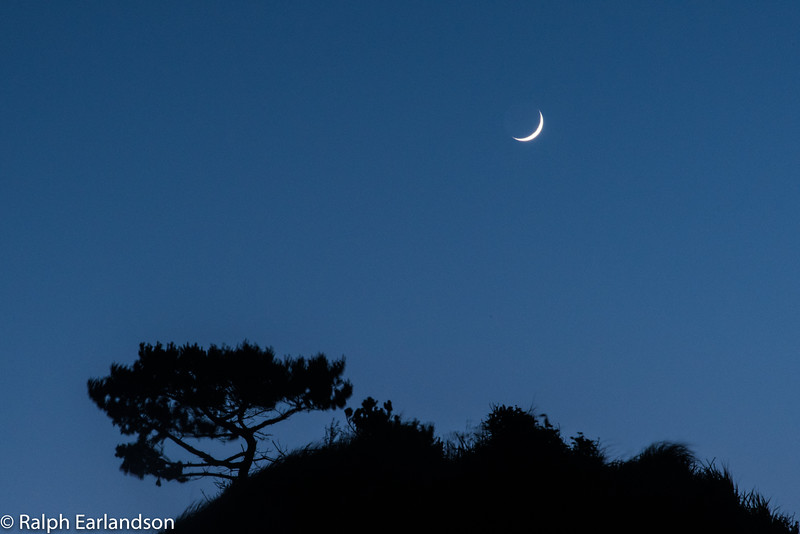 Crescent moon over a Crescent City seastack.