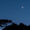 Crescent moon over a Crescent City seastack.