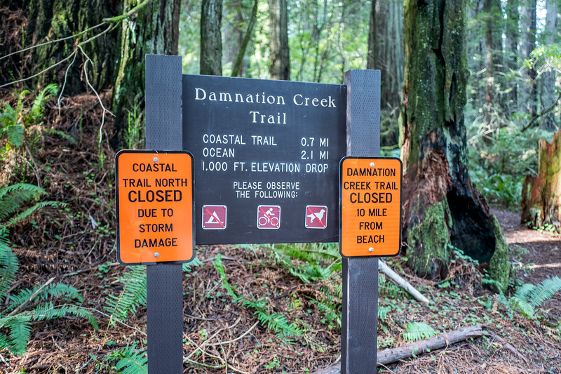 Damnation Creek Trail