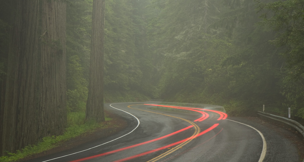 Redwoods highways long exposure...a lot of people stared at me as they drove by...why is this crazy guy standing out in the rain at 530am on a Monday morning?