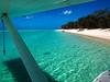 Landed, Heron Island