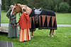 Prinsessens hest blir salet opp