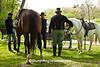 Civil War Camp Reenactors, Springfield, Illinois with Horses, Springfield, Illinois