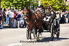 Horse-Drawn Carriage, Springfield, Illinois