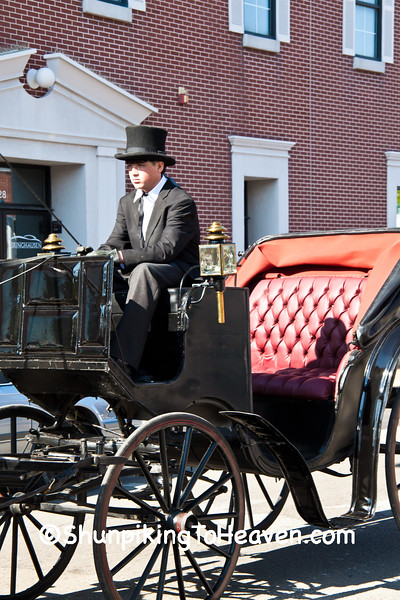 Young Carriage Driver, Springfield, Illinois