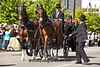 Horse-Drawn Carriage, Lincoln's Family, Springfield, Illinois