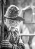 Old Confederate soldier at Appomattox Court House, Virginia - Surrender Day 2015 -2 - 72 ppi