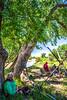 Bent's Old Fort Nat'l Historic Site; 2016 Encampment - C2-0483 - 72 ppi